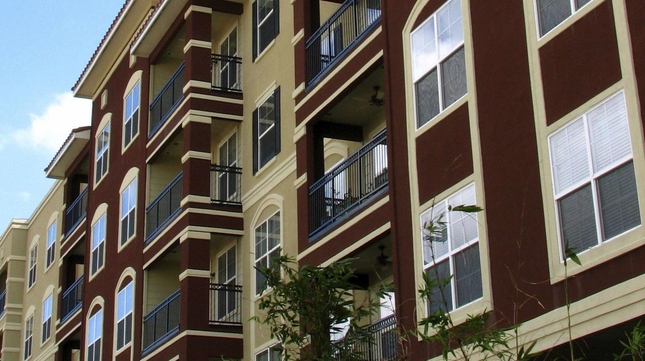Las plagas para quienes viven en apartamentos