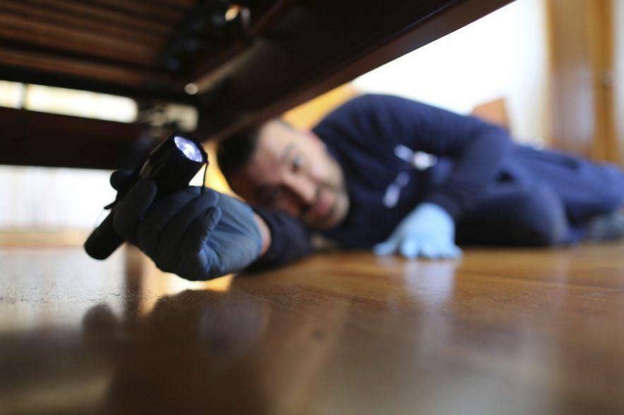 ¿Cómo prevenir las plagas de chinches en un hotel?