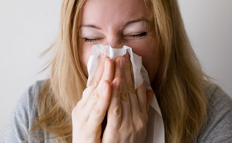 ¿Existe una conexión entre las plagas y el asma en los niños?