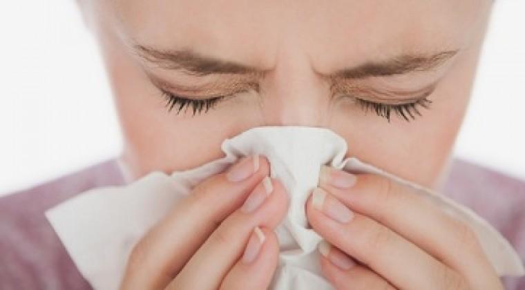 ¿Tienes alergia a alguna plaga?