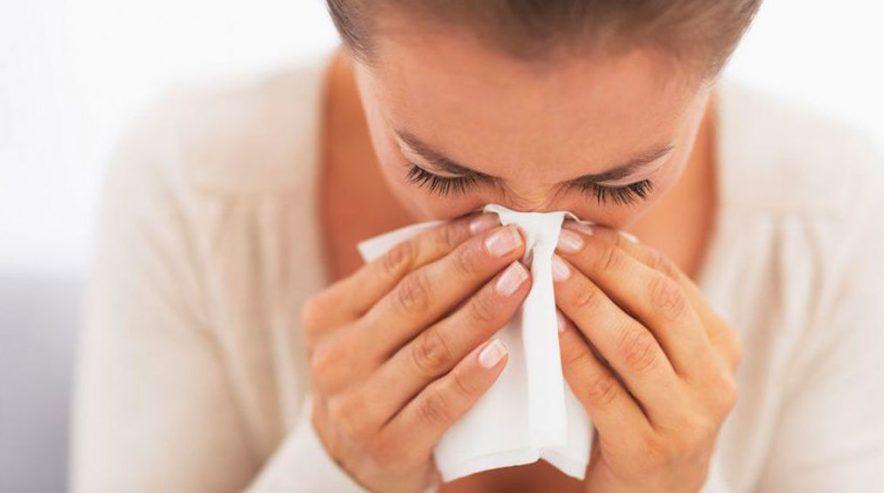 5 consejos para combatir los alergenos de las plagas