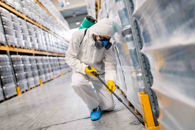 Control de plagas en negocios o empresas