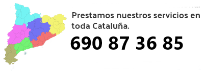 Control de plagas Mataró