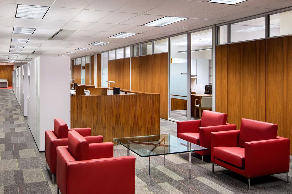 Eliminar plagas en oficinas y como prevenirlas