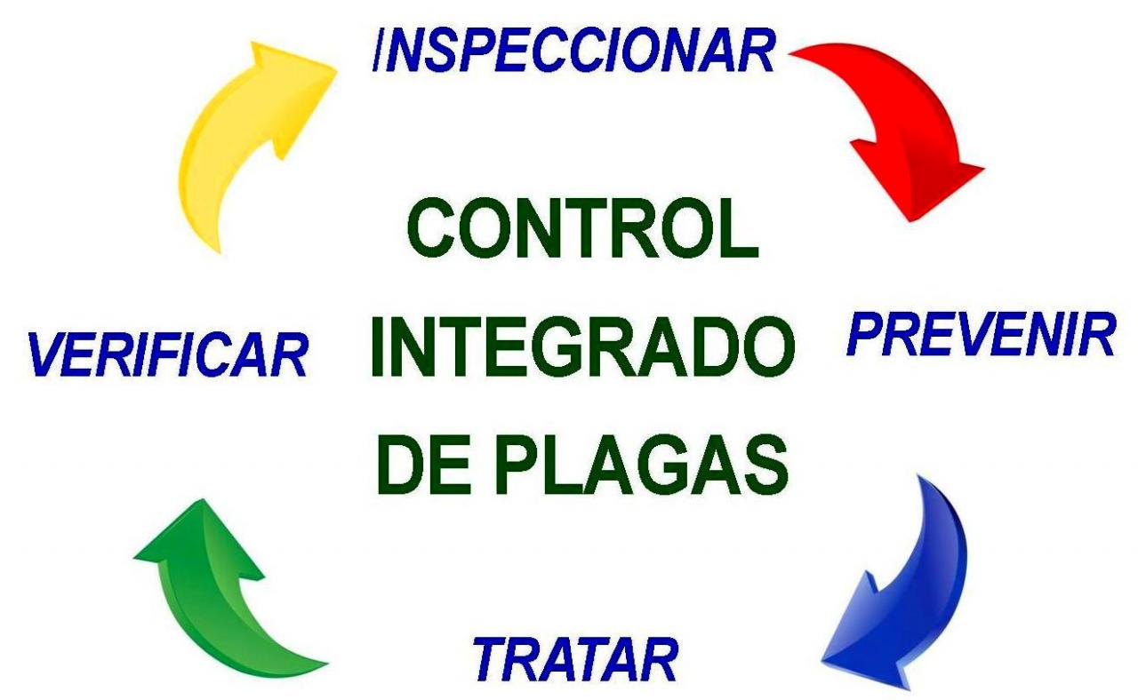 Empresa de control de plagas Barcelona