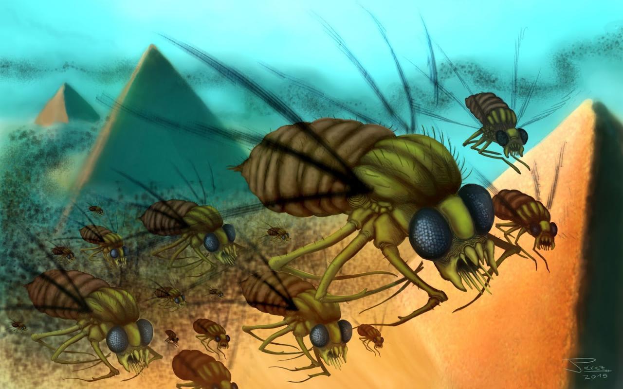 Seis mitos falsos sobre la eliminación de plagas
